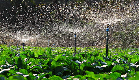 From traditional flood irrigation to modern sprinkler irrigation
